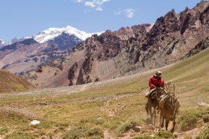 Gaucho at Aconcagua